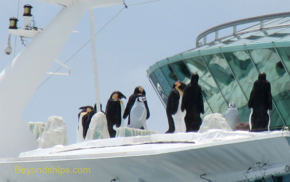 Liberty of the Seas cruise ship penguins
